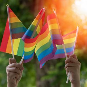 Pride flags held in the air