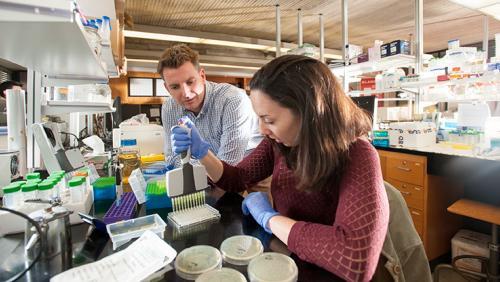 Research at UMass Dartmouth
