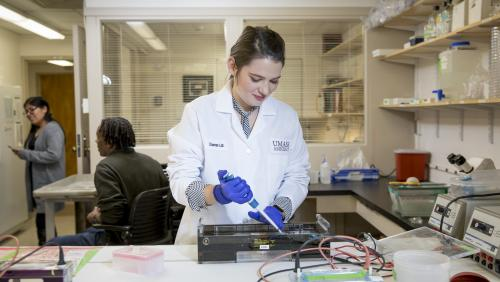 Student researcher works in lab