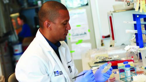Researcher at UMass Medical works in research lab