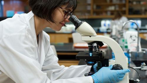 Researcher looks into microscope