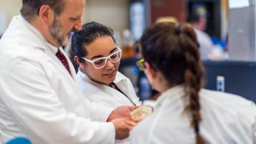 Three student researchers in medical lab at UMass Dartmouth